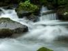 monteverde,-Costa-Rica110-copy