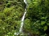 monteverde,-Costa-Rica90-copy